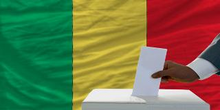 Parliamentary Elections in Mali—Is There a Link Between Low Turnout and Lack of Democratic Accountability?