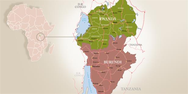 Twenty Years of Divergent Paths: Rwanda and Burundi