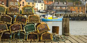 Post-Brexit Briefing: The Future of Agricultural and Fisheries Policy