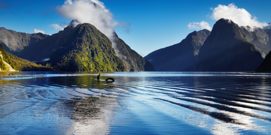 The Quest for Prosperity: How can New Zealand keep living standards rising for all?
